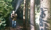 <h2>Лечение деревьев и обработка участков</h2>