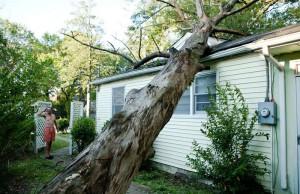 Дерево упало на частный дом