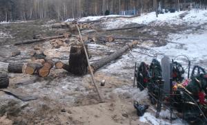 Вырубка деревьев на кладбище