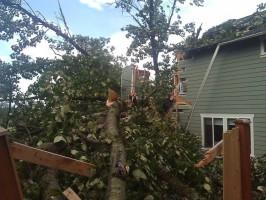 Дерево разрушило дом