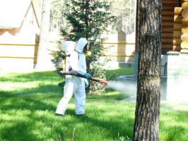 Обработка территории участка от комаров
