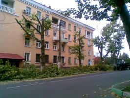 Назначение омолаживающей обрезки деревьев