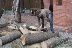 Спиливание деревьев в Ногинском районе
