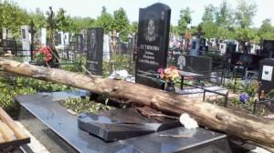 Удаление опасных деревьев на кладбище