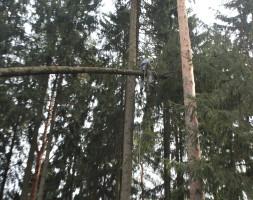 Спил деревьев в Ленинском районе