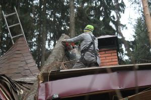 Удаление деревьев Железнодорожный