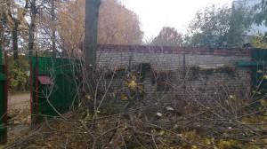 Вырубка деревьев в домодедовском районе
