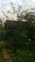 Обрезка плодовых деревьев в Наро-Фоминское